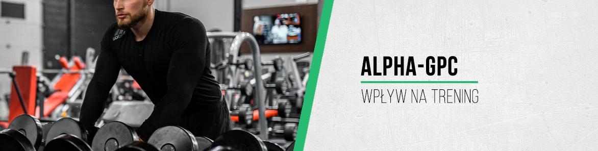 Alpha-GPC, a wpływ na trening