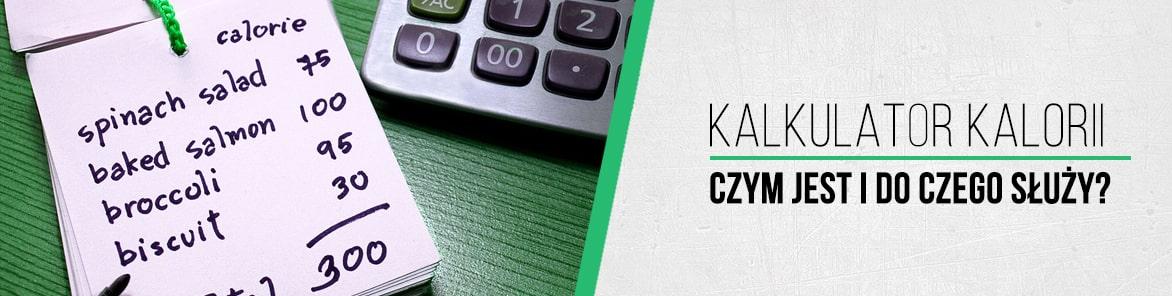 kalkulator kalorii