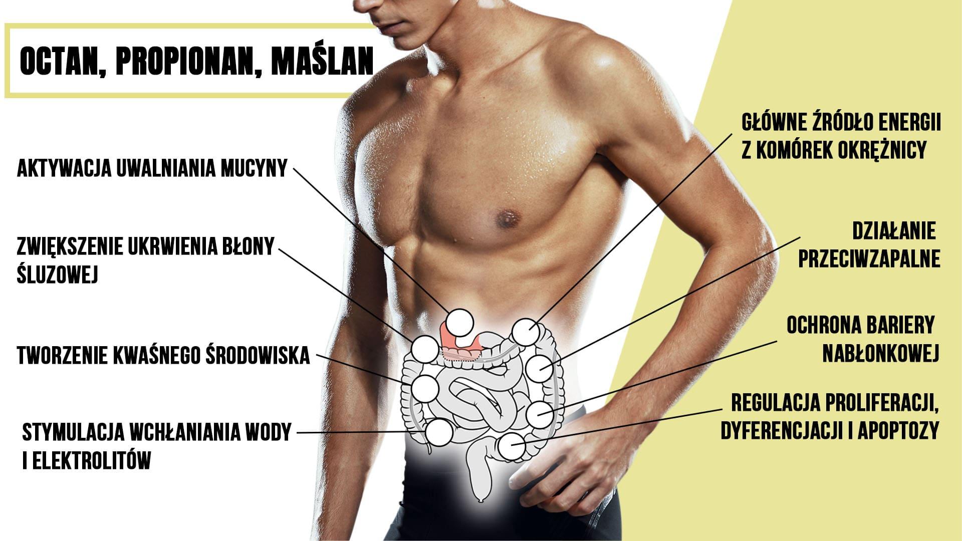 rodzaje kwasów tłuszczowych