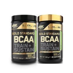 BCAA Train + Sustain - 266g