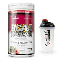 BCAA Powder - 700g + Shaker